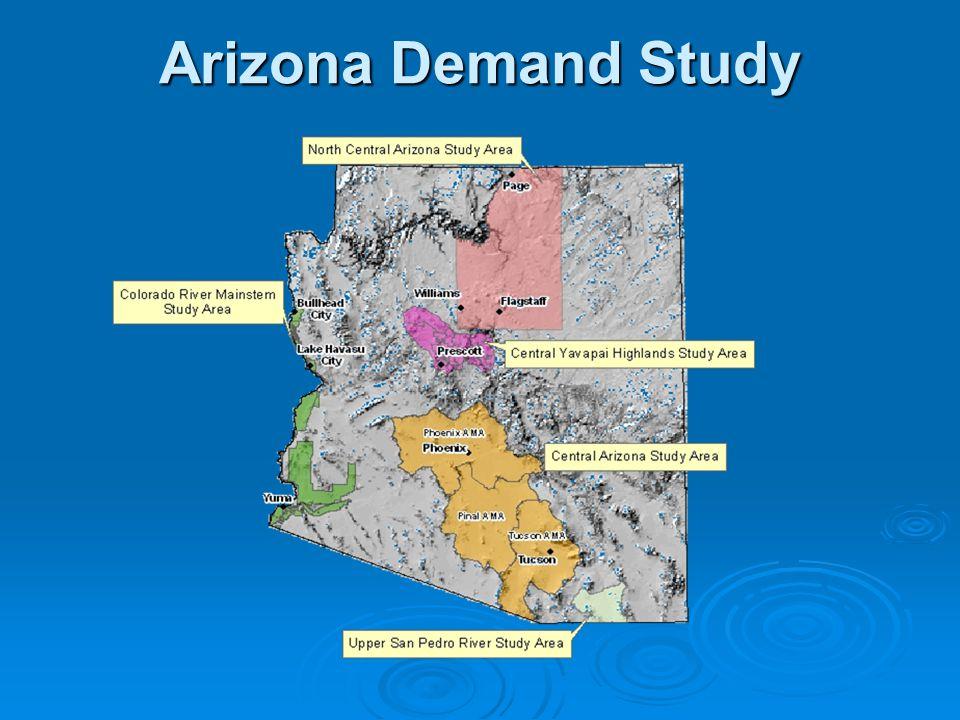 Arizona Demand Study