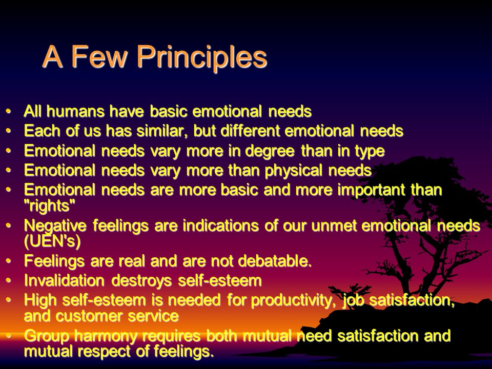 A Few Principles All humans have basic emotional needsAll humans have basic emotional needs Each of us has similar, but different emotional needsEach of us has similar, but different emotional needs Emotional needs vary more in degree than in typeEmotional needs vary more in degree than in type Emotional needs vary more than physical needsEmotional needs vary more than physical needs Emotional needs are more basic and more important than rights Emotional needs are more basic and more important than rights Negative feelings are indications of our unmet emotional needs (UEN s)Negative feelings are indications of our unmet emotional needs (UEN s) Feelings are real and are not debatable.Feelings are real and are not debatable.
