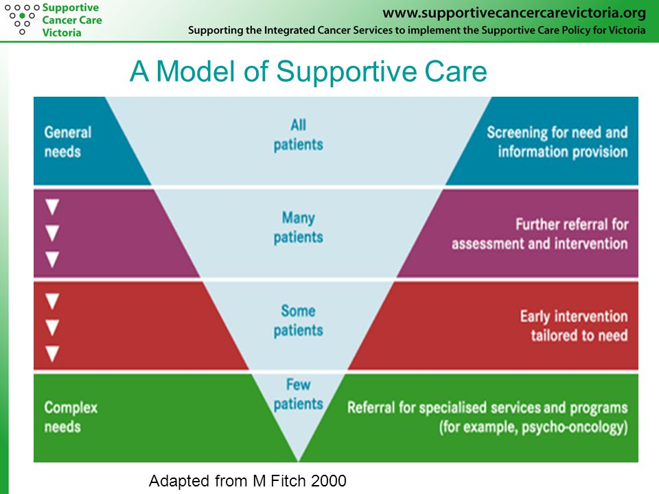 A Model of Supportive Care Adapted from M Fitch 2000