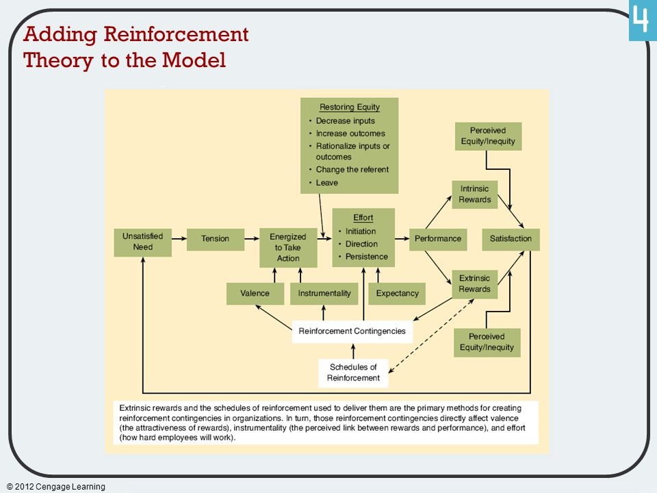 © 2012 Cengage Learning Adding Reinforcement Theory to the Model