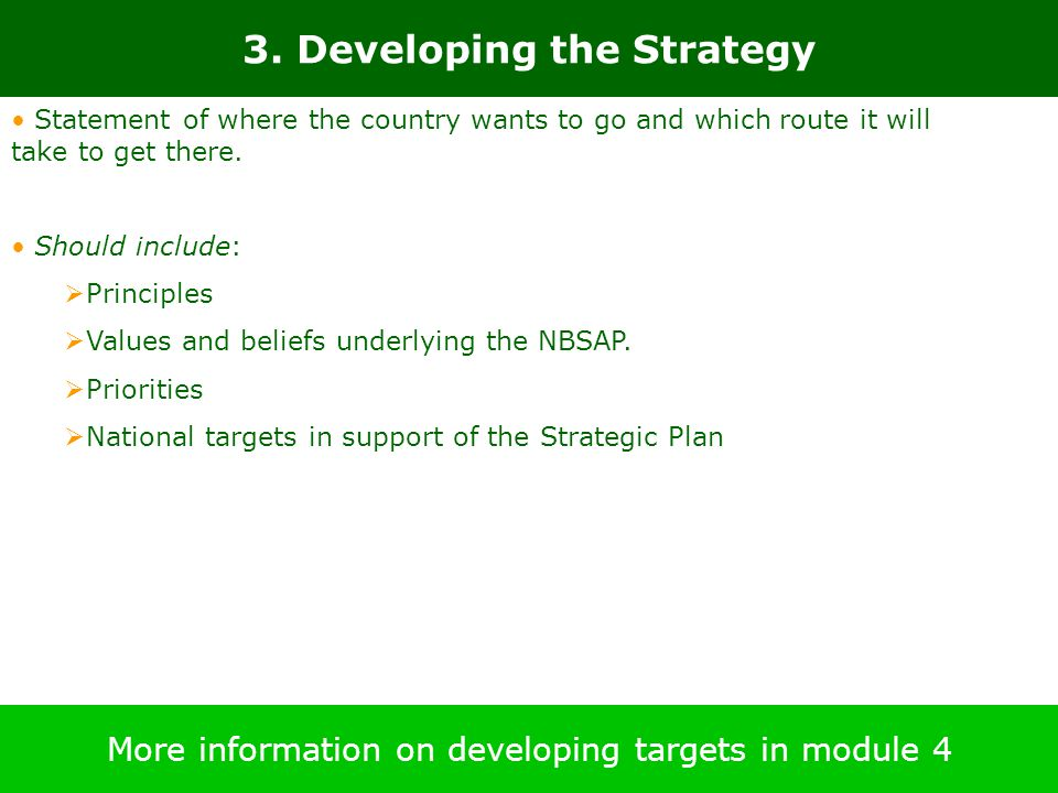 3. Developing the Strategy More information on developing targets in module 4 Statement of where the country wants to go and which route it will take