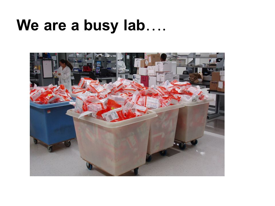 We are a busy lab ….