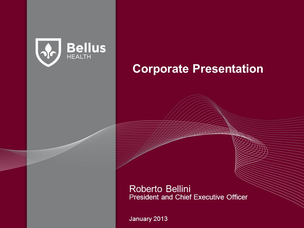 Corporate Presentation Roberto Bellini President and Chief Executive Officer January 2013