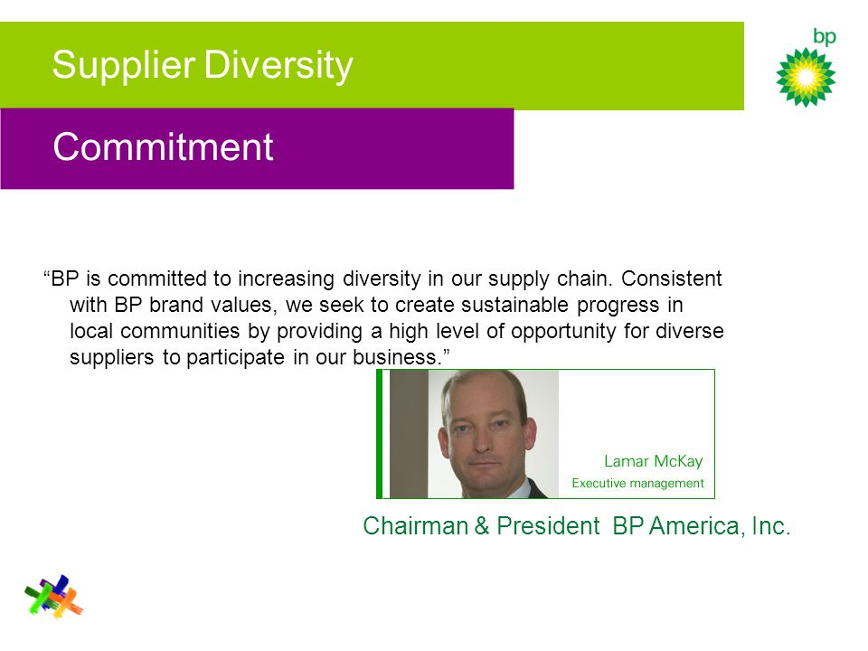 "Supplier Diversity ""BP is committed to increasing diversity in our supply chain. Consistent with BP brand values, we seek to create sustainable progre"