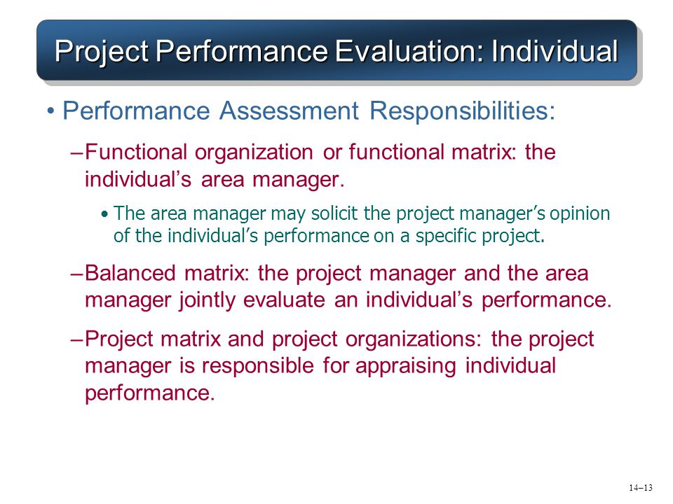 Project Performance Evaluation: Individual Performance Assessment Responsibilities: –Functional organization or functional matrix: the individual's ar