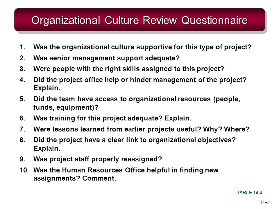 Organizational Culture Review Questionnaire TABLE 14.4 1.Was the organizational culture supportive for this type of project? 2.Was senior management s