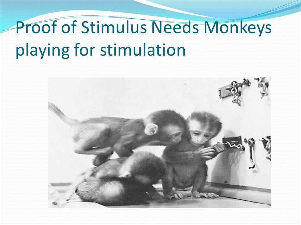 Proof of Stimulus Needs Monkeys playing for stimulation