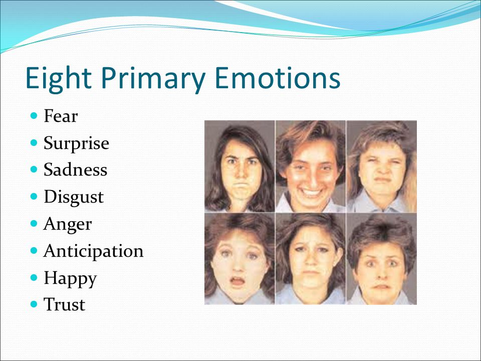 Eight Primary Emotions Fear Surprise Sadness Disgust Anger Anticipation Happy Trust