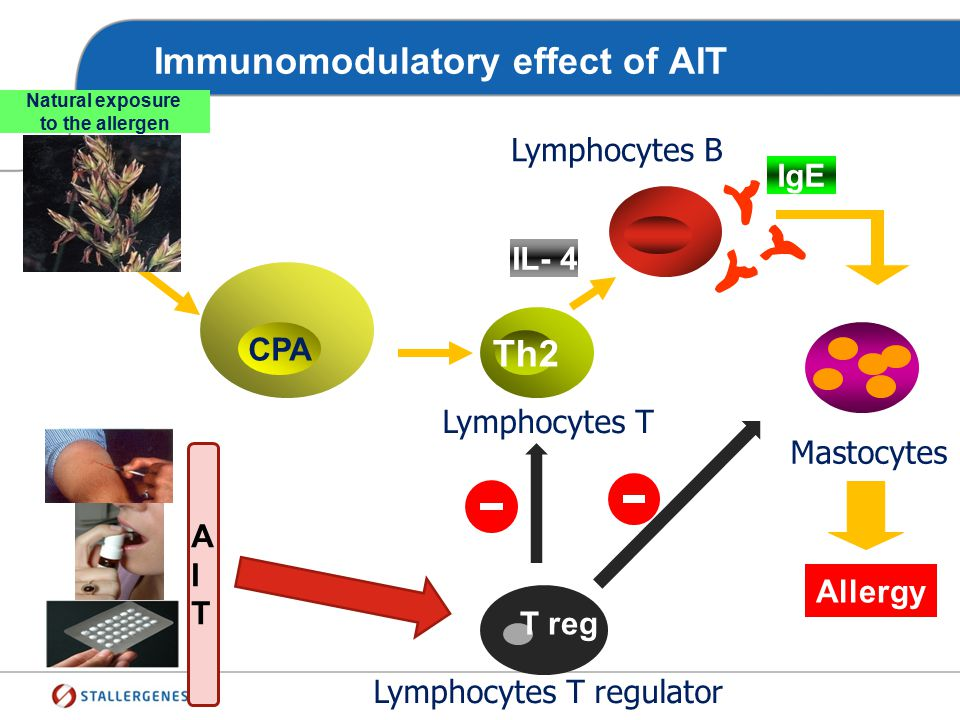Definition Specific immunotherapy is the repeated administration of allergen products to allergic subjects to activate immunomodulatory mechanisms and