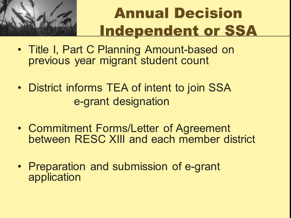 Planned Supplemental Activities All Level Instructional Services Secondary Students Middle School Students Elementary Students Early Education Students All Level Support Services What is the LEA/ESC process?