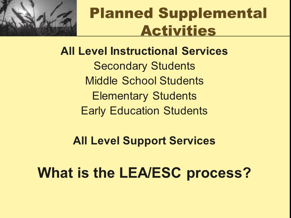 Planned Supplemental Activities All Level Instructional Services Secondary Students Middle School Students Elementary Students Early Education Student