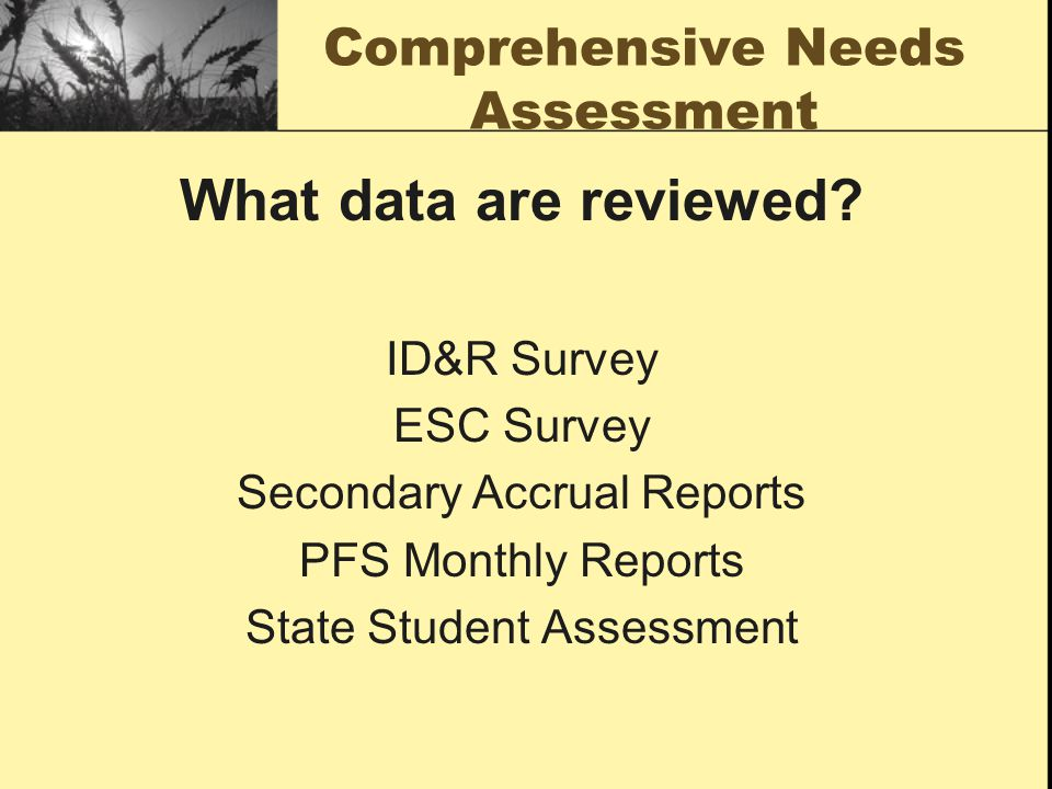 Comprehensive Needs Assessment What data are reviewed? ID&R Survey ESC Survey Secondary Accrual Reports PFS Monthly Reports State Student Assessment