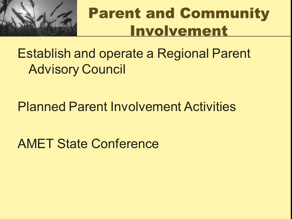 Parent and Community Involvement Establish and operate a Regional Parent Advisory Council Planned Parent Involvement Activities AMET State Conference