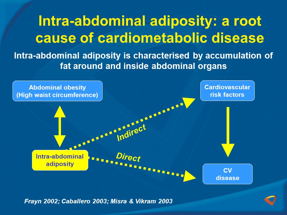 Intra-abdominal adiposity: a root cause of cardiometabolic disease Intra-abdominal adiposity CV disease Cardiovascular risk factors Direct Indirect Intra-abdominal adiposity is characterised by accumulation of fat around and inside abdominal organs Frayn 2002; Caballero 2003; Misra & Vikram 2003 Abdominal obesity (High waist circumference)