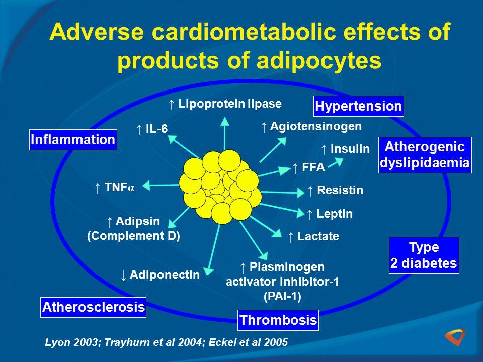 Adverse cardiometabolic effects of products of adipocytes Adipose tissue ↑ IL-6 ↓ Adiponectin ↑ Leptin ↑ TNF α ↑ Adipsin (Complement D) ↑ Plasminogen activator inhibitor-1 (PAI-1) ↑ Resistin ↑ FFA ↑ Insulin ↑ Agiotensinogen ↑ Lipoprotein lipase ↑ Lactate Inflammation Type 2 diabetes Hypertension Atherogenic dyslipidaemia Thrombosis Atherosclerosis Lyon 2003; Trayhurn et al 2004; Eckel et al 2005