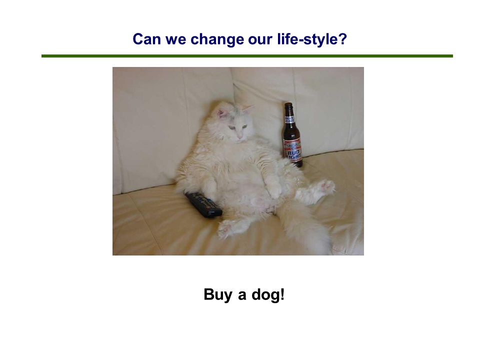 Can we change our life-style? Buy a dog!