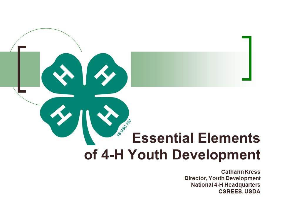 Essential Elements of 4-H Youth Development Cathann Kress Director, Youth Development National 4-H Headquarters CSREES, USDA