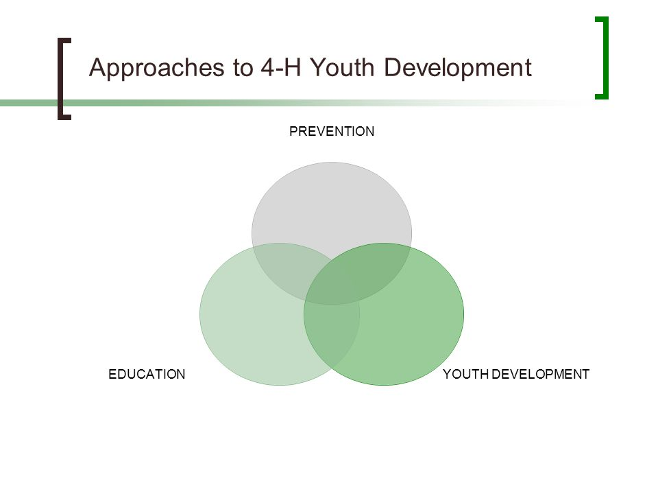 Approaches to 4-H Youth Development PREVENTION YOUTH DEVELOPMENT EDUCATION