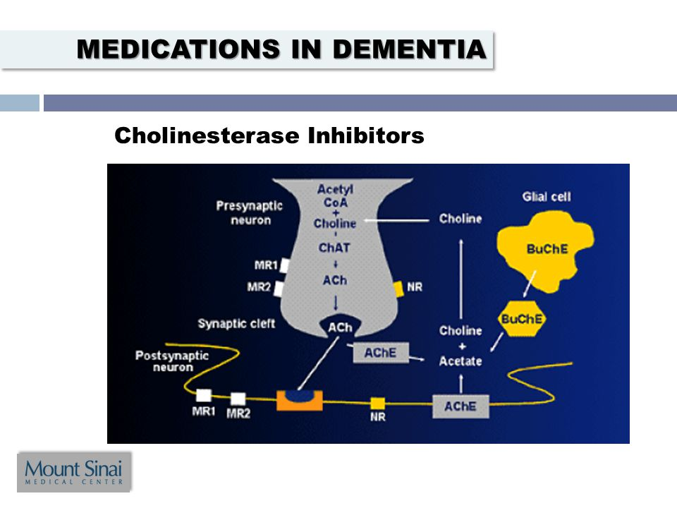 Cholinesterase Inhibitors MEDICATIONS IN DEMENTIA