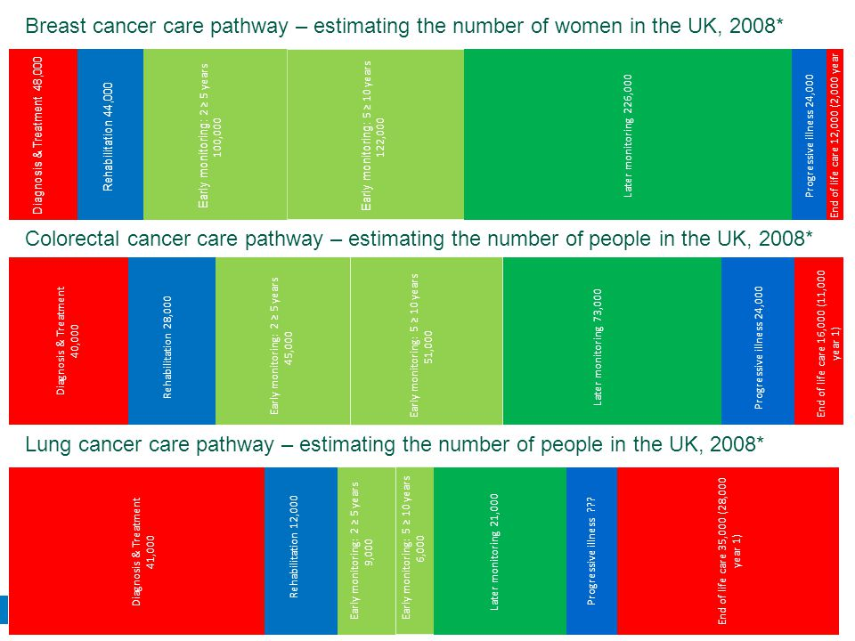 National Cancer Survivorship Initiative Breast cancer care pathway – estimating the number of women in the UK, 2008* Colorectal cancer care pathway – estimating the number of people in the UK, 2008* Lung cancer care pathway – estimating the number of people in the UK, 2008*