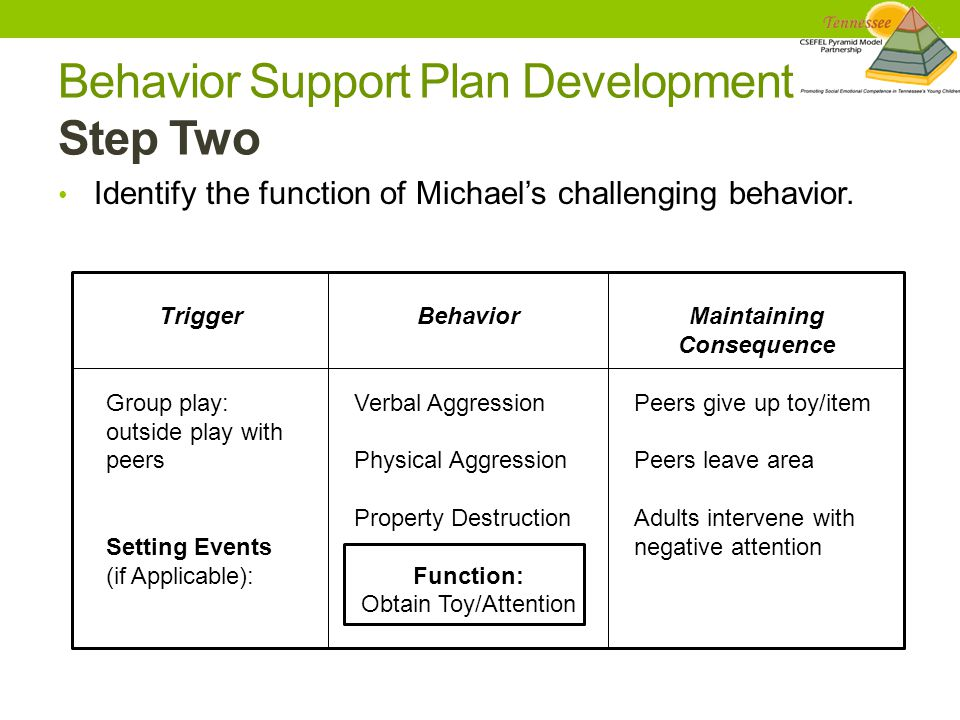 Identify the function of Michael's challenging behavior.