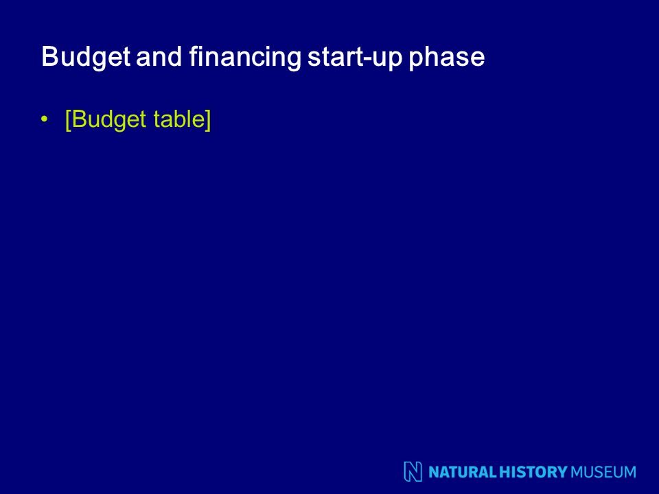 Budget and financing start-up phase [Budget table]