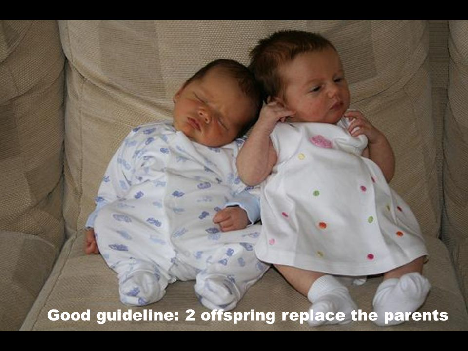 Good guideline: 2 offspring replace the parents