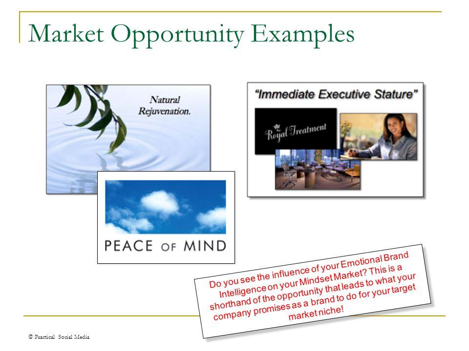 Market Opportunity © Practical Social Media Enter your Market Opportunity here!