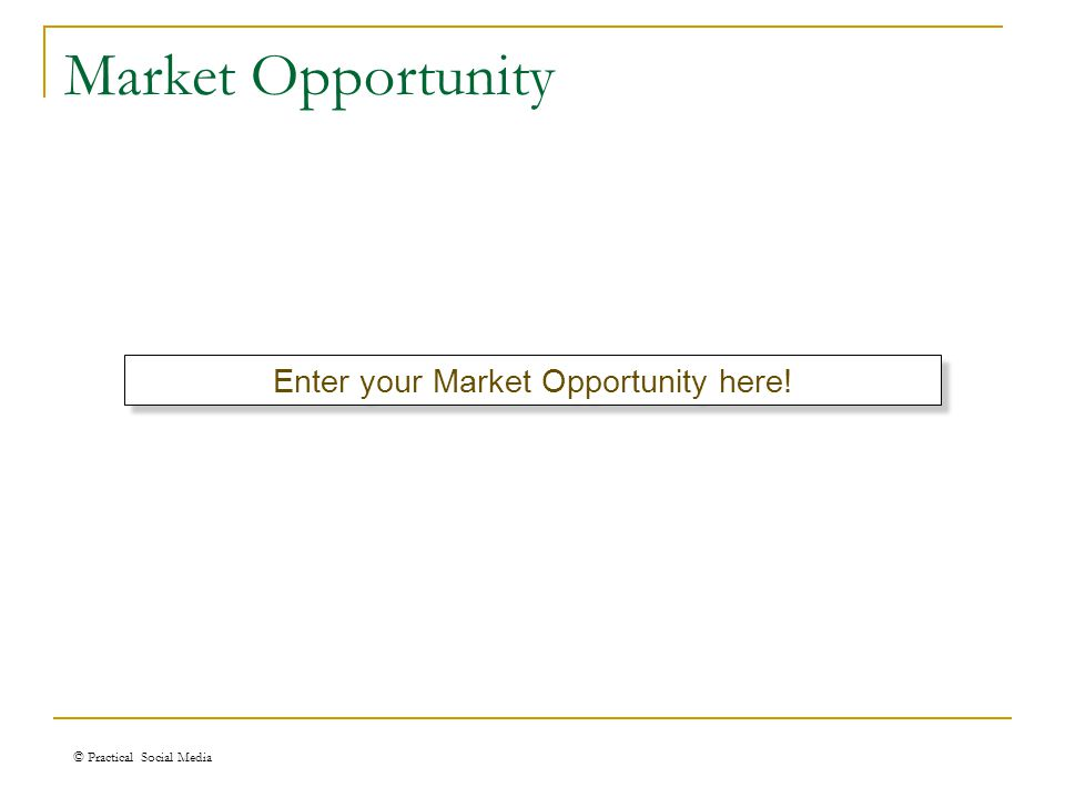 Market Opportunity © Practical Social Media Enter your Market Opportunity here!