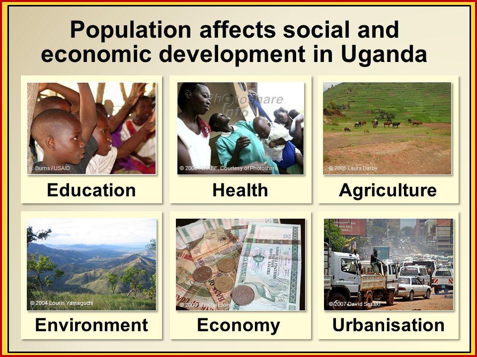 © 2007 David Sasaki Urbanisation Population affects social and economic development in Uganda Education K.
