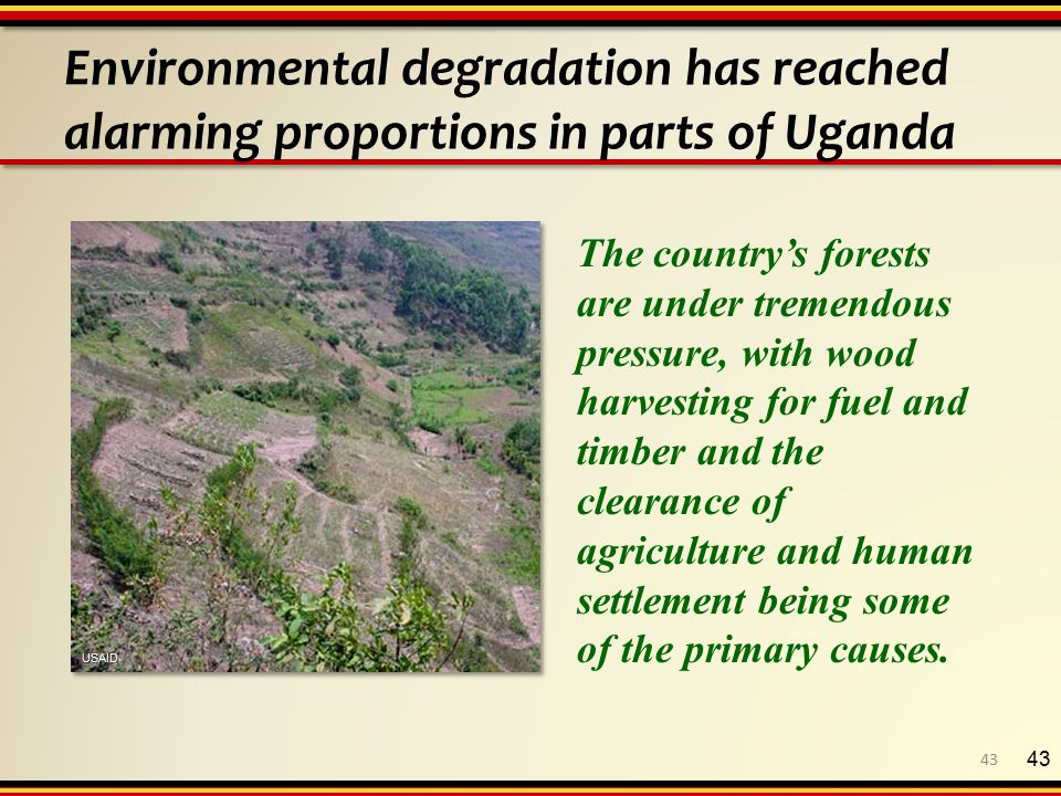 Environmental degradation has reached alarming proportions in parts of Uganda 43 The country's forests are under tremendous pressure, with wood harvesting for fuel and timber and the clearance of agriculture and human settlement being some of the primary causes.