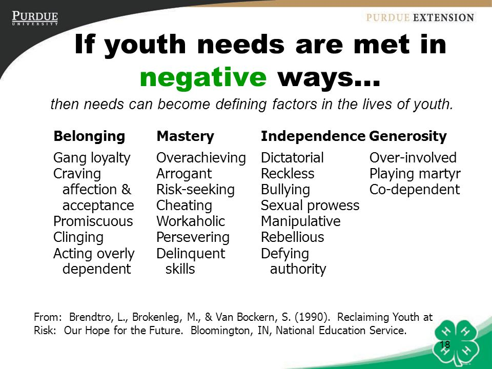 19 If youth needs are unmet...some youth retreat or give up on getting needs met.