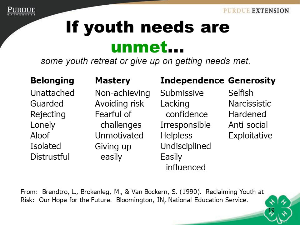 20 How can we help meet youths' needs in 4-H?