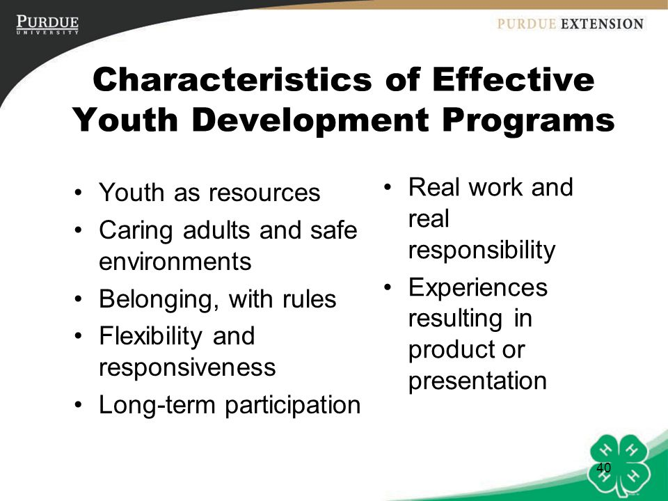 41 If you were to design a youth development program intended to assist young people to become healthy, problem-solving, constructive adults … what would it look like?