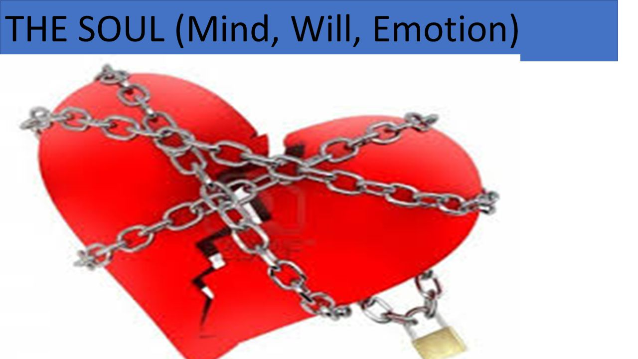 THE SOUL (Mind, Will, Emotion)
