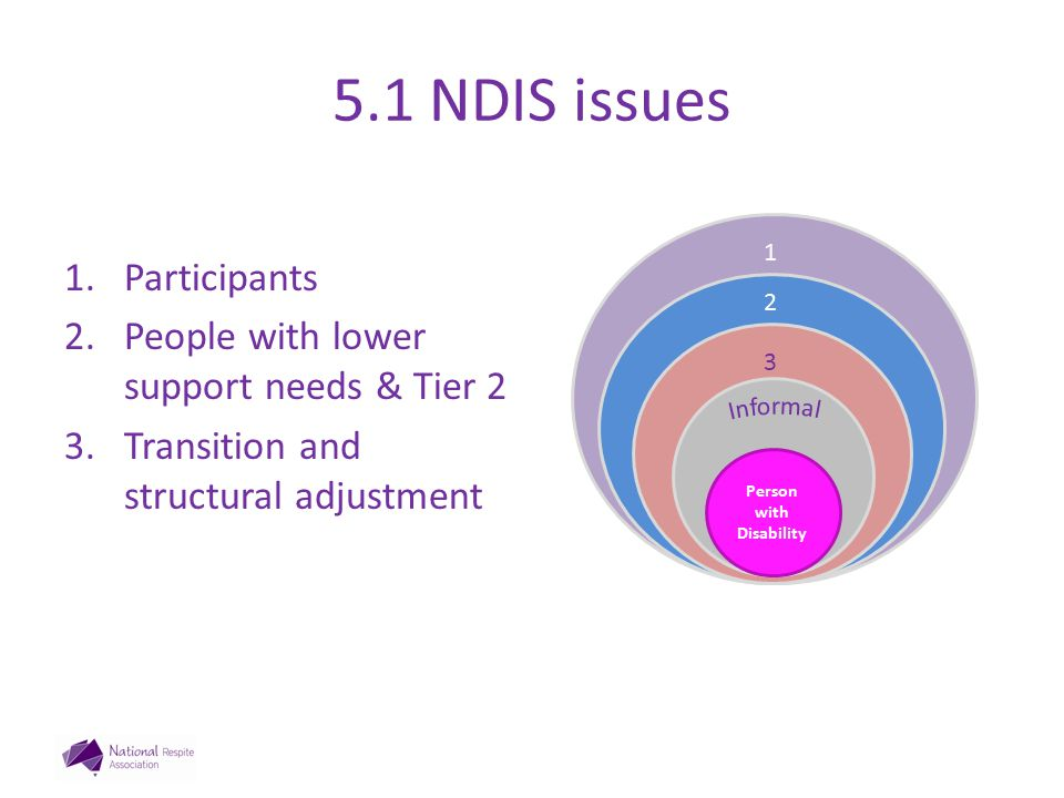 5.1 NDIS issues 1.Participants 2.People with lower support needs & Tier 2 3.Transition and structural adjustment 3 Person with Disability 3 2 1