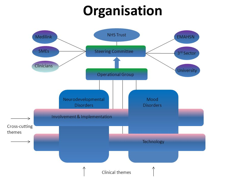 Organisation Neurodevelopmental Disorders Mood Disorders Involvement & Implementation Technology Operational Group Steering Committee Charities EMAHSN
