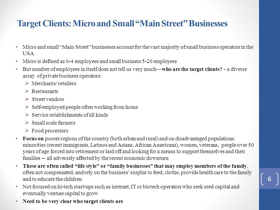 Target Clients: Micro and Small Main Street Businesses Micro and small Main Street businesses account for the vast majority of small business operators in the USA Micro is defined as 0-4 employees and small business 5-20 employees But number of employees in itself does not tell us very much—who are the target clients.