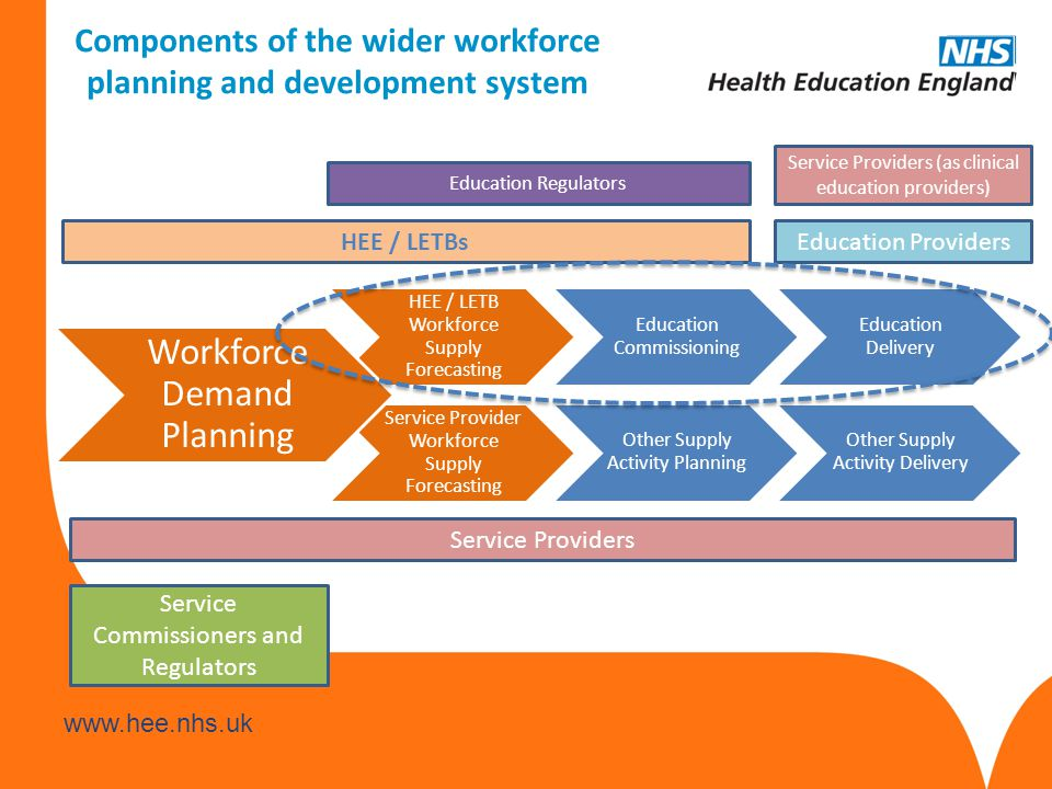 www.hee.nhs.uk Components of the wider workforce planning and development system HEE / LETB Workforce Supply Forecasting Education Commissioning Educa