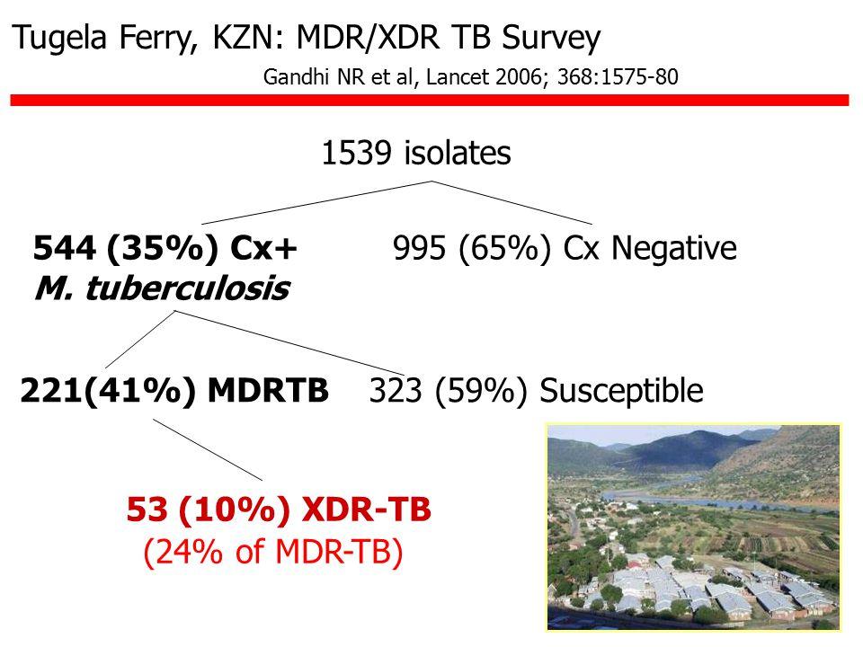 1539 isolates 544 (35%) Cx+ M.