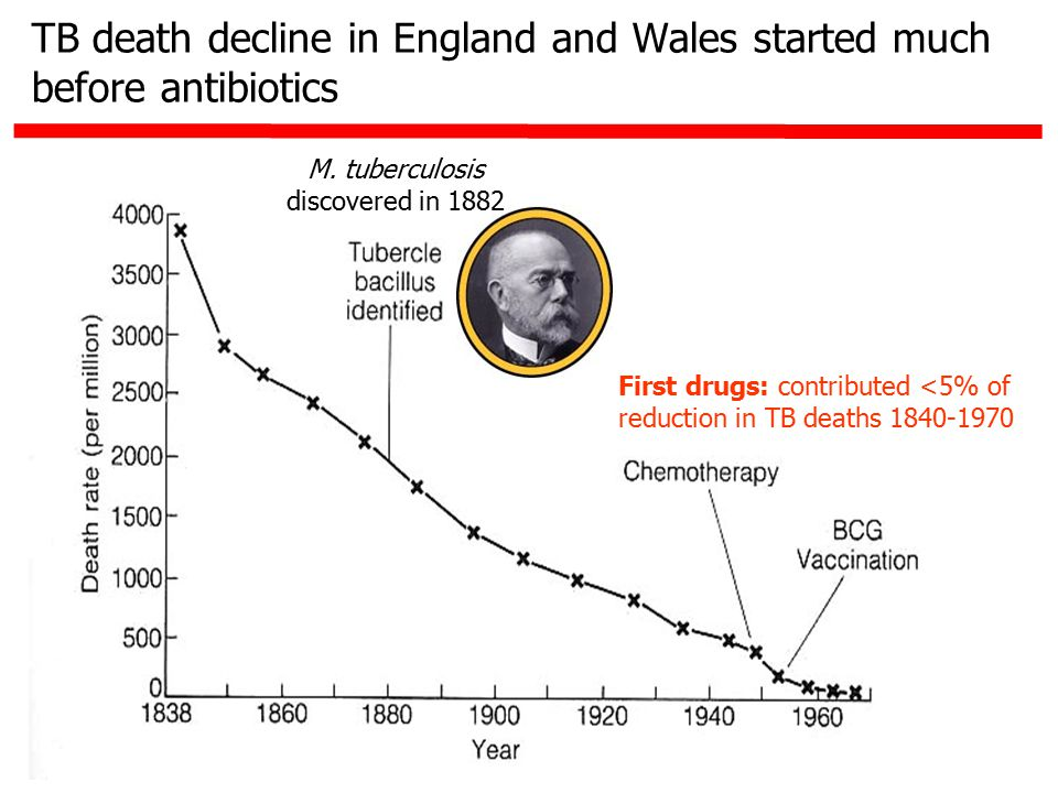 TB death decline in England and Wales started much before antibiotics First drugs: contributed <5% of reduction in TB deaths 1840-1970 M. tuberculosis