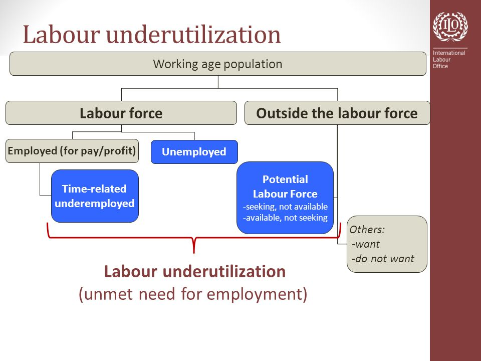 Labour underutilization Working age population Labour force Unemployed Others: -want -do not want Potential Labour Force -seeking, not available -available, not seeking Time-related underemployed Labour underutilization (unmet need for employment) Employed (for pay/profit) Outside the labour force