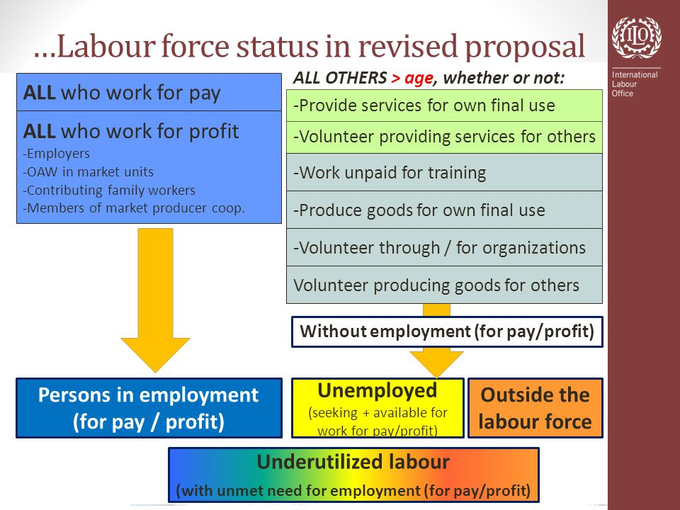 …Labour force status in revised proposal ALL who work for pay ALL who work for profit -Employers -OAW in market units -Contributing family workers -Members of market producer coop.