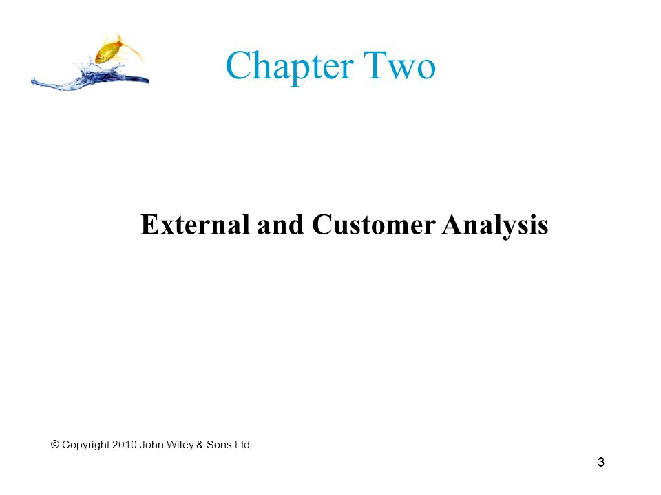 Chapter Two © Copyright 2010 John Wiley & Sons Ltd 3 External and Customer Analysis