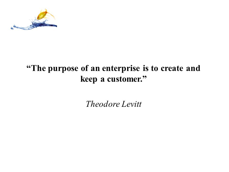 """""""The purpose of an enterprise is to create and keep a customer."""" Theodore Levitt"""