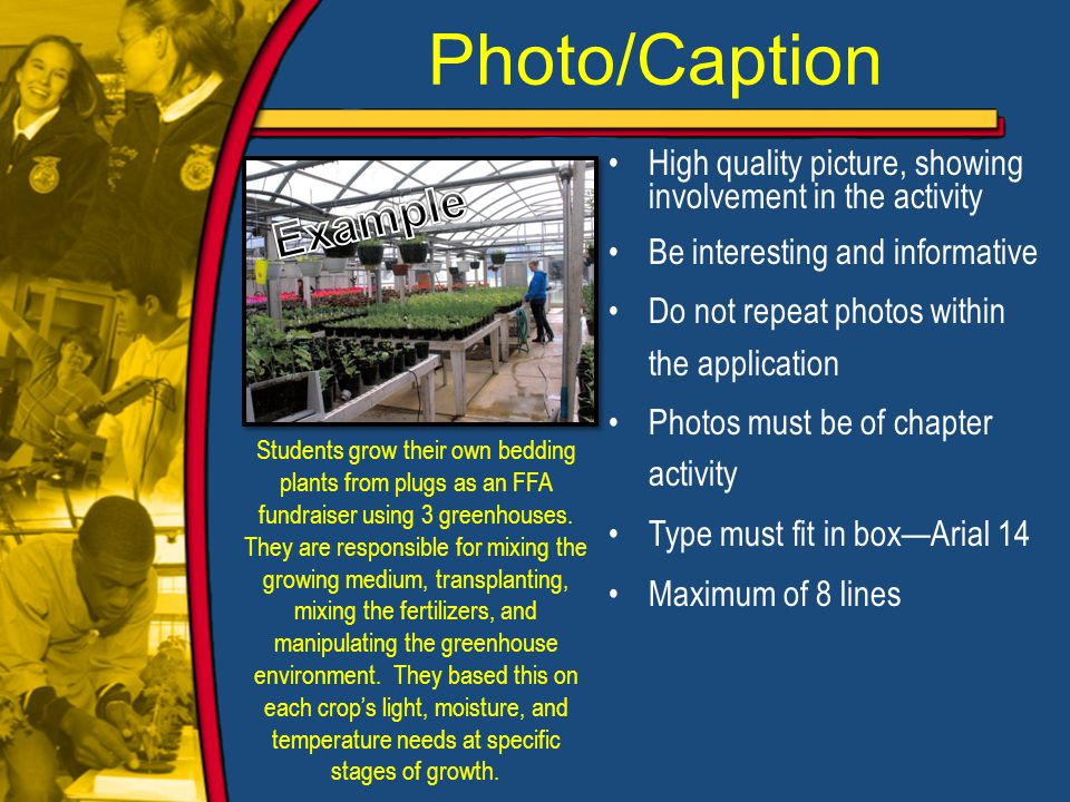 Photo/Caption High quality picture, showing involvement in the activity Be interesting and informative Do not repeat photos within the application Photos must be of chapter activity Type must fit in box—Arial 14 Maximum of 8 lines Students grow their own bedding plants from plugs as an FFA fundraiser using 3 greenhouses.