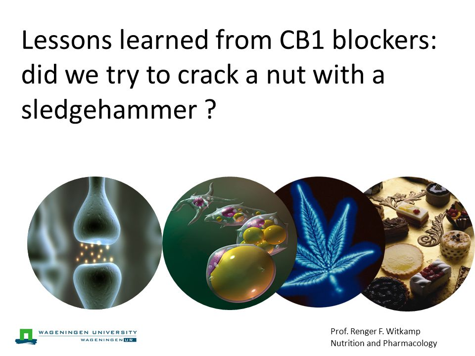 Lessons learned from CB1 blockers: did we try to crack a nut with a sledgehammer .