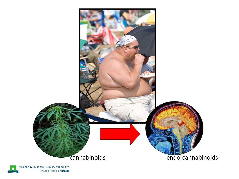 cannabinoidsendo-cannabinoids