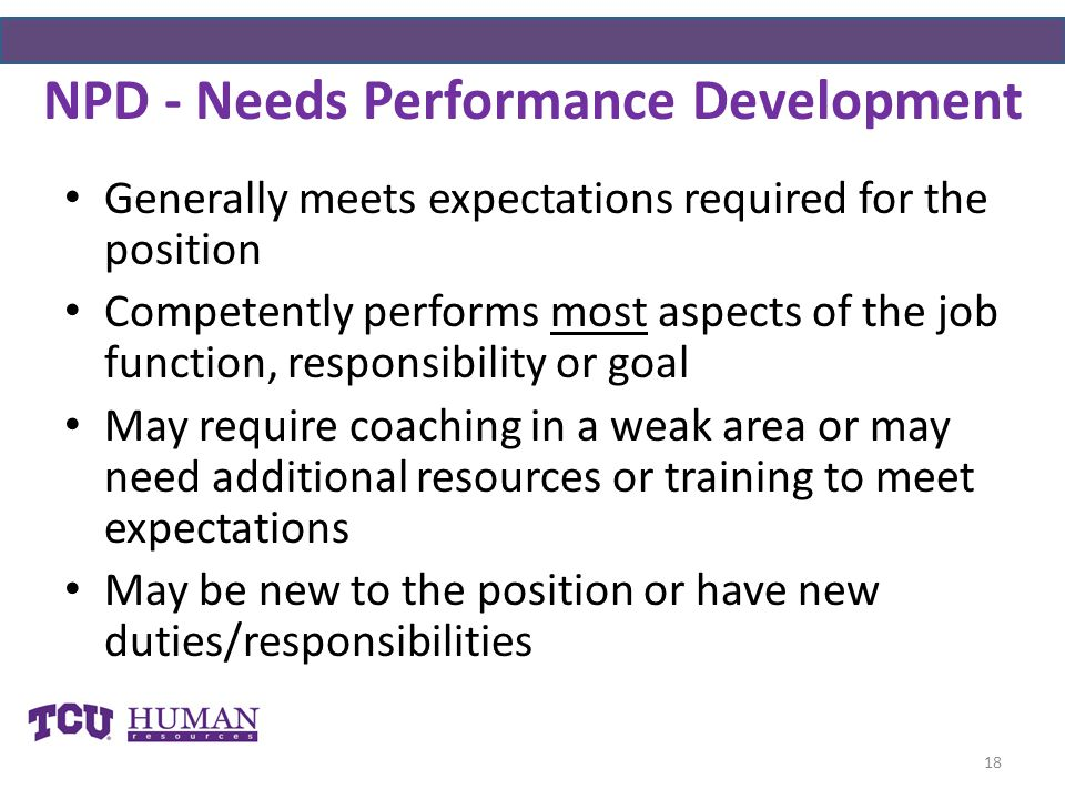 NPD - Needs Performance Development Generally meets expectations required for the position Competently performs most aspects of the job function, responsibility or goal May require coaching in a weak area or may need additional resources or training to meet expectations May be new to the position or have new duties/responsibilities 18