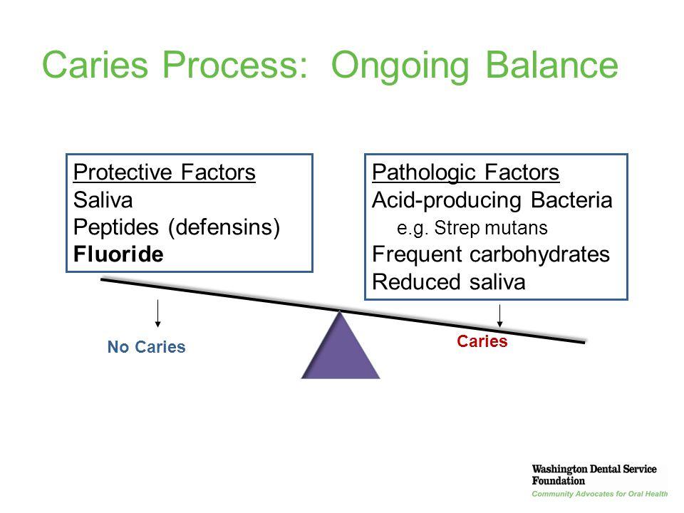 18 Caries Process: Ongoing Balance Protective Factors Saliva Peptides (defensins) Fluoride Pathologic Factors Acid-producing Bacteria e.g. Strep mutan